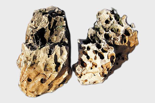 Πέτρα κήπου Φεγγαρόπετρα