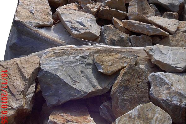 πέτρα Παιανίας 51